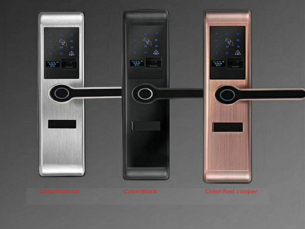 Durable Smart Biometric Fingerprint Door Lock 5 Unlock Ways